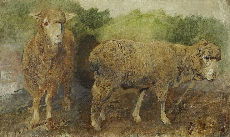 sheep. oil on canvas.