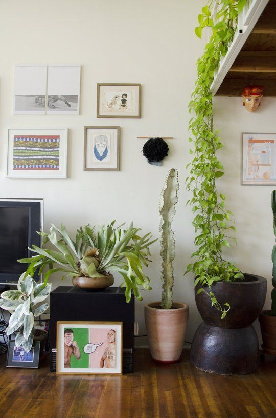 Small Space Expanding Ideas To Steal From A 300 Square Foot Studio Apartment PlantsApartment