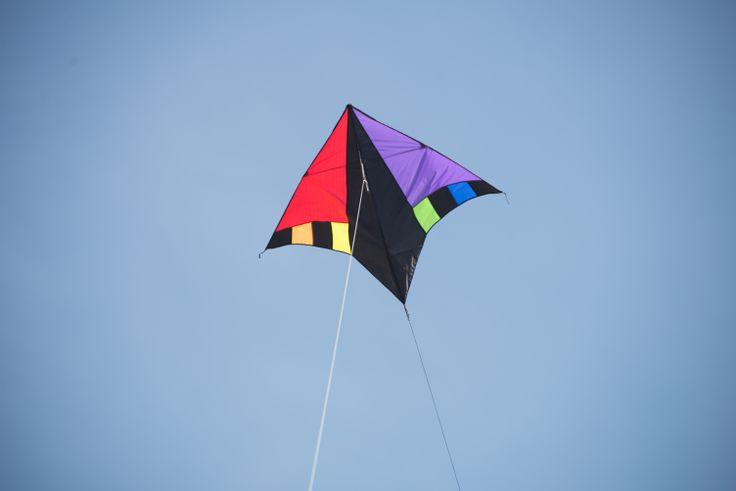 Kite flying high