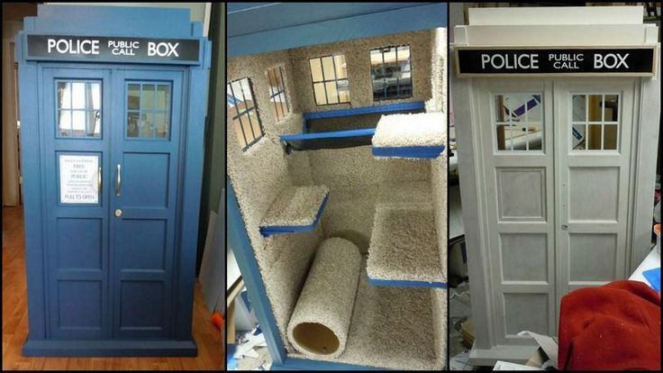 Doctor Who tardis cat fort | The Owner-Builder Network