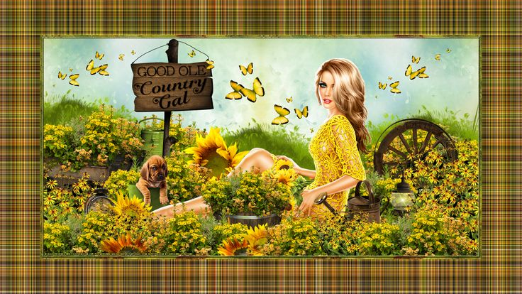 Adrienne´s Designs: Sunflower/Country Goodness