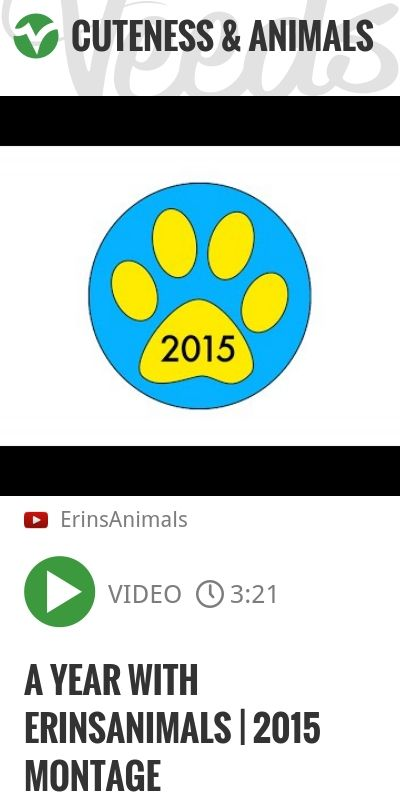 A Year With ErinsAnimals | 2015 Montage | http://veeds.com/i/yUlZBBaUAyg3Z6_9/cuteness/