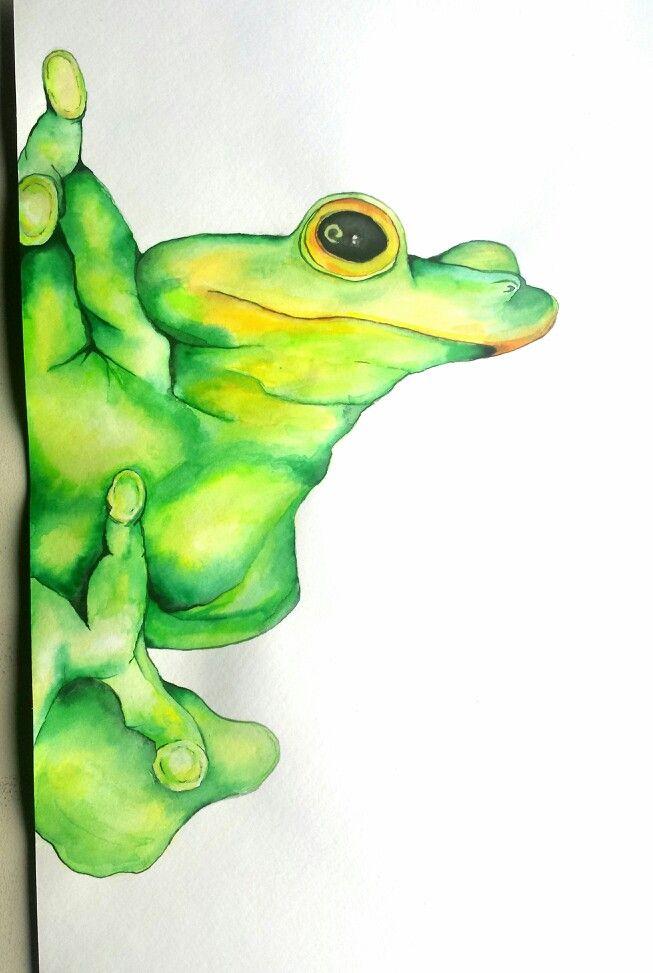 Green Tree Frog, watercolour