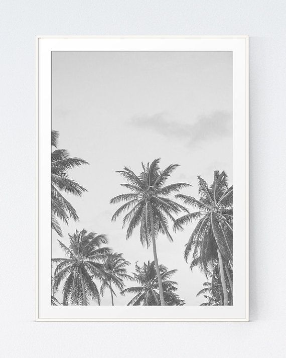 Palm Tree Photography, Black and White Beach Wall Print, Black White Tropical Decor, Palm Tree Wall Art, Photo Decorations, INSTANT DOWNLOAD