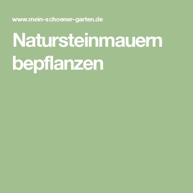 Natursteinmauern Bepflanzen