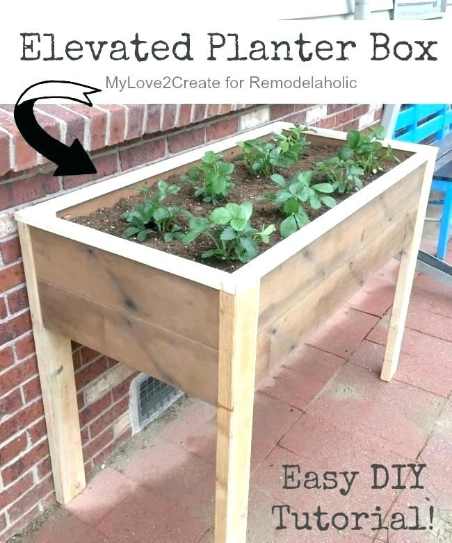 Raised Garden Bed On Wheels Beds Elevated Planter Box Garden Planter Boxes Garden Boxes Diy