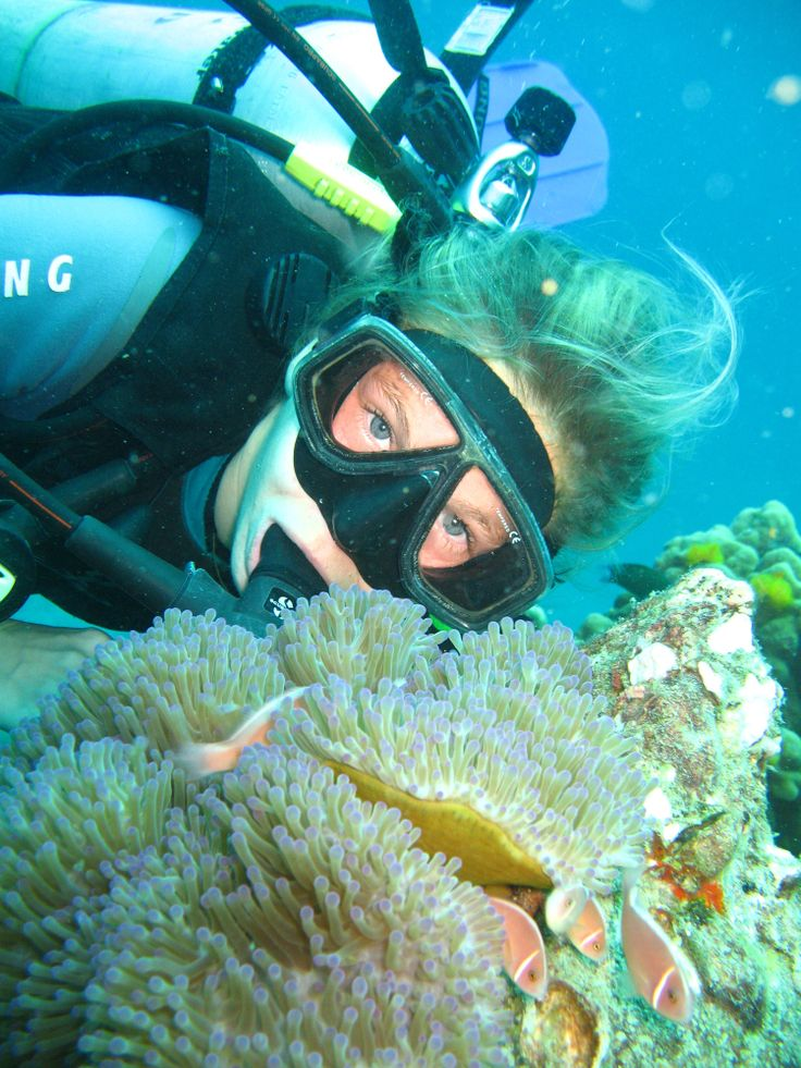 #Mozambique offers superb #diving and #snorkelling opportunities.  #BucketList #Beach #Safari #Africa #Holiday #Travel #Ocean #Adventure #Island #Fish #Coral