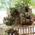 AUCTION: Win a Succulent Wreath and help support Alabama Tornado Relief efforts!