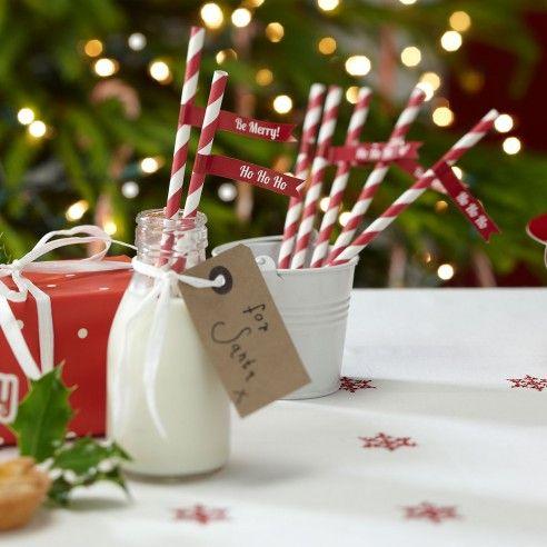 Leuke rood-wit gestreepte papieren rietjes met elk een eigen vlaggetje. Op de vlaggetjes staat er Ho, Ho, Ho of Be Merry. Zet de rietjes in een mooi potje op tafel en laat de gasten ze zelf nemen. Niet alleen voor de kleinste onder ons maar ook leuk in de kerst punch.