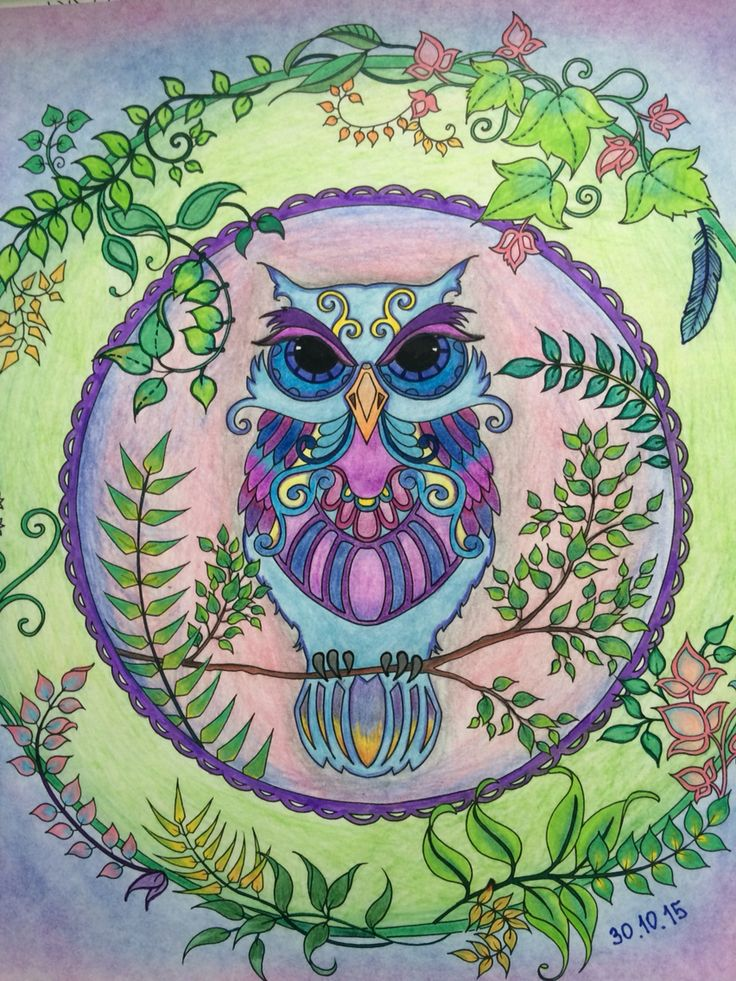 Owl forest enchanted