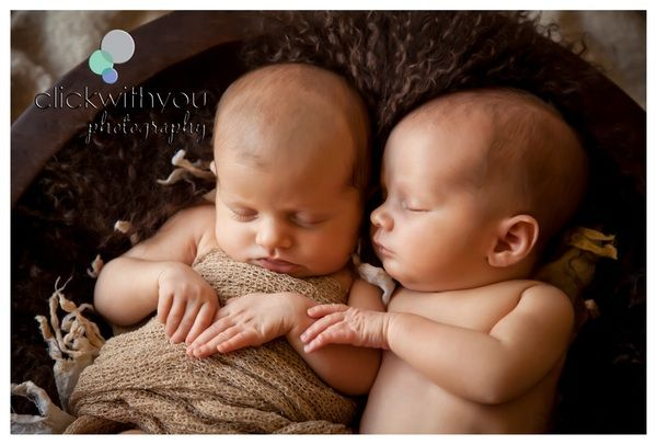 Newborn Photography Brisbane Twins Multiples