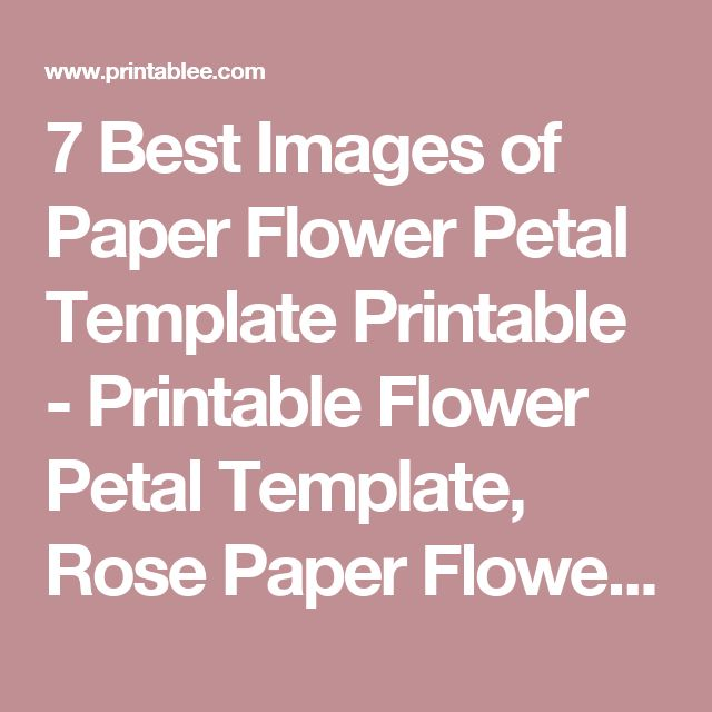 7 Best Images of Paper Flower Petal Template Printable - Printable Flower Petal Template, Rose Paper Flower Template Printable and Daffodil Paper Flower Cut Out Templates / printablee.com