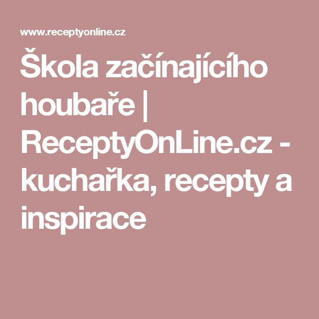 Škola začínajícího houbaře | ReceptyOnLine.cz - kuchařka, recepty a inspirace