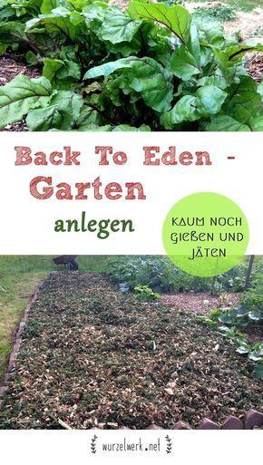 Eigenen Garten schnell und einfach anlegen. Die Back To Eden-Methode ist super praktisch, weil kaum noch gegossen und gejätet werden muss. #Gemüsegarten #Garten #Selbstversorgung #Beet anlegen