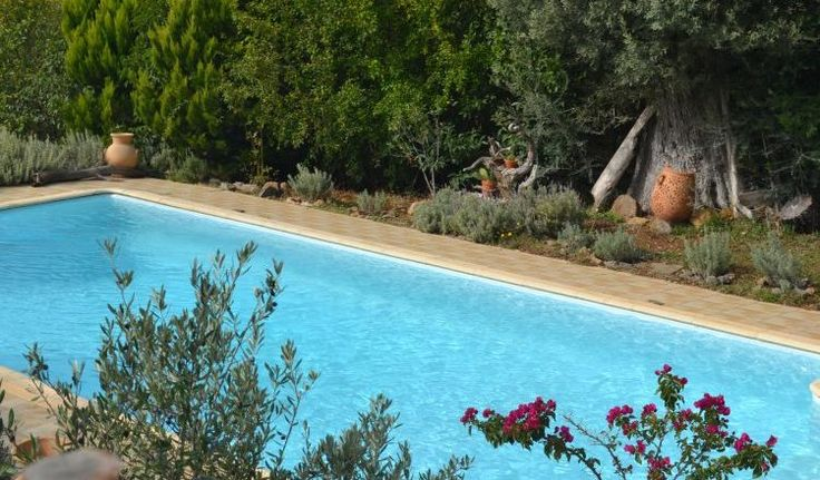 Rent a villa in Evia Island