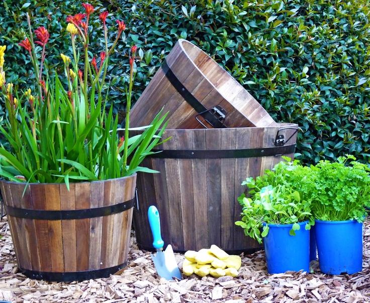 wine barrels for flower pots