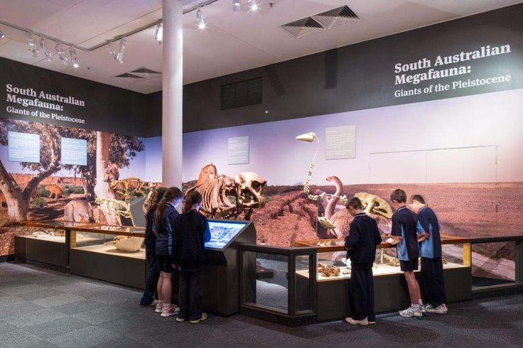 Places are still available for the Megafauna digital learning professional development session at the South Australian Museum - register now at - http://bit.ly/megafauna24Feb  Venue: South Australian Museum When: 24 February 2015 Time: 4pm-6:30pm Area: Science & Technologies Type: Digital/eLearning (Facilitated) Cost: $20 (includes light refreshment) Duration: 2 hours 30 minutes  An iPad will be supplied for each participant to use during the professional development session.