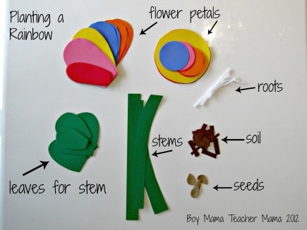 Parts of a Flower - How a Flower grows! Planting a Rainbow by Lois Ehlert