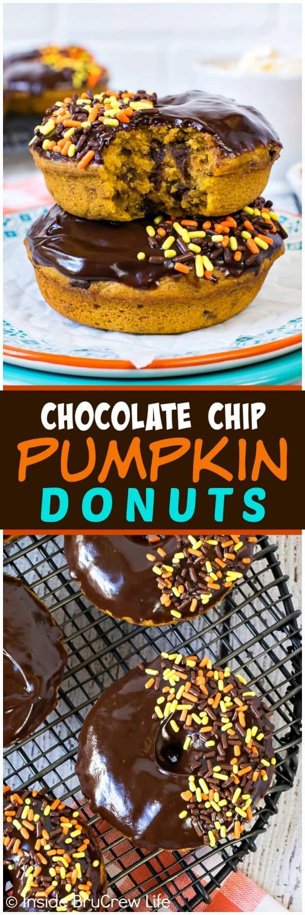 Chocolate Chip Pumpkin Donuts - these soft dense pumpkin donuts are loaded with chocolate goodness on top and inside. Great fall recipe for breakfast or after school snacks. #donuts #pumpkin #fall