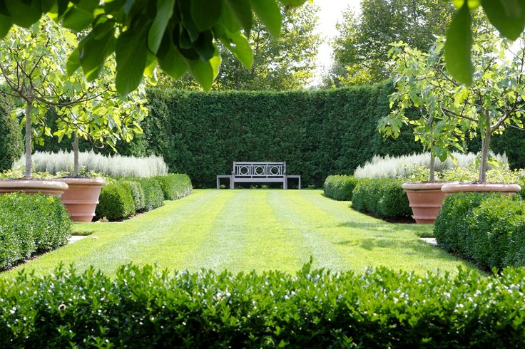 A formal white garden has a garden bench situated at the