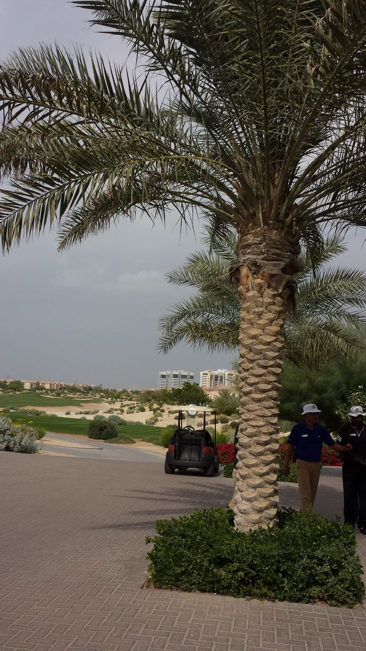 The Els Club, Dubai PAR 72 GRUNDAD 2008 DESIGN ERNIE ELS. HAVING BLÅ TEE 6 828 M RÖD TEE 5 343 MHCP DRIVING RANGE   Fairwaysen på denna bana drar verkligen nytta av den dramatiska topografin i området, vilket gör den mycket spännande och underhållande att spela. Med sina kuperade sluttningar i den inhemska ökenlandskapet är denna en en fin links bana i klassisk stil.