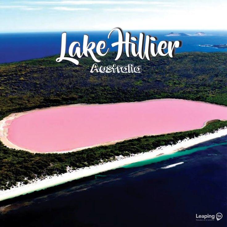 A pesar de su inusual tonalidad, el lago no presenta efectos adversos conocidos en los seres humanos. Visto desde arriba el lago parece un sólido de color rosa chicle. Conoce más de Australia e infórmate de los paquetes que tenemos para ti en www.leapingto.com