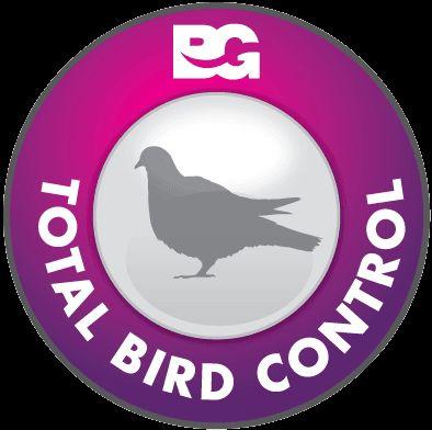 Best Ways to #Prevent #Birds on the #Roof http://bit.ly/1LTWXyR