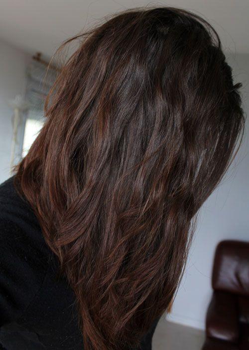 Jolie-coquille-henné-cheveux-résultat-avis-revue-