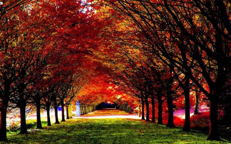 Fall Season Computer Wallpaper 30 Most Beautiful Autumn Wallpapers Hd Mixhd Wallpapers