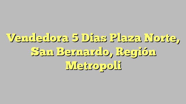 Vendedora 5 Dias Plaza Norte, San Bernardo, Región Metropoli