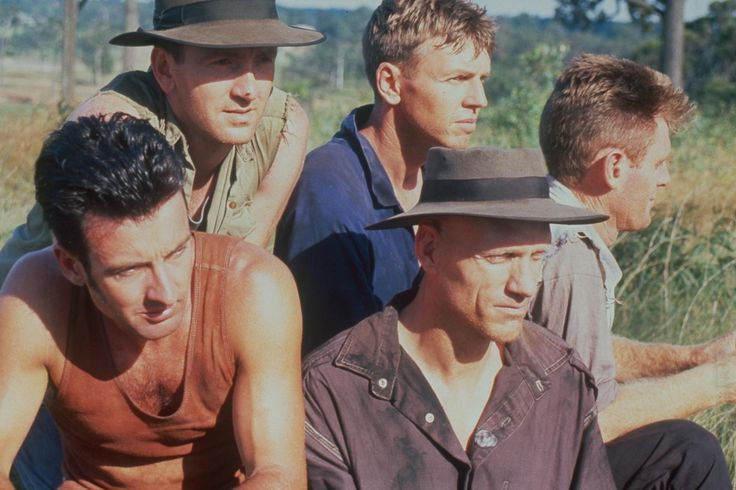 Midnight Oil Photos | The Official Midnight Oil Site