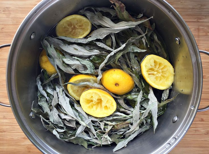 Here's a great recipe for an easy to make primitive mugwort lemon beer. Also, a chance to win a copy of Pascal Baudar's book, The New Wildcrafted Cuisine!