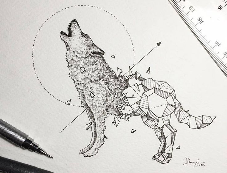 Ms de 25 ideas increbles sobre Dibujos de animales en Pinterest