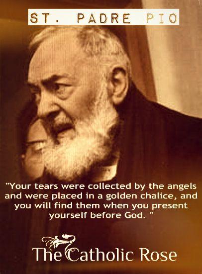 St. Padre Pio...  https://www.facebook.com/TheCatholicRose