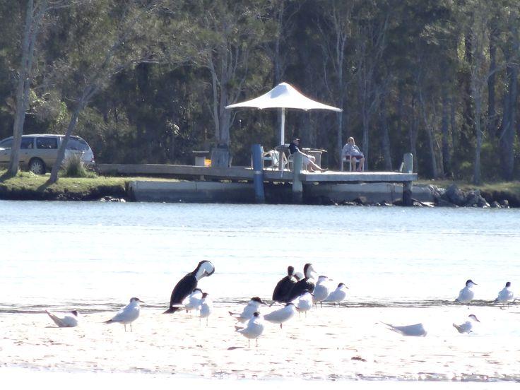The River Shack - Yamba accommodation - Byron Bay - waterfront property -