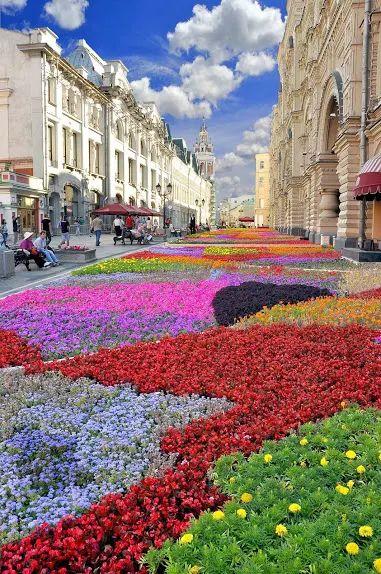 Fiesta de la flor... ITALIA...