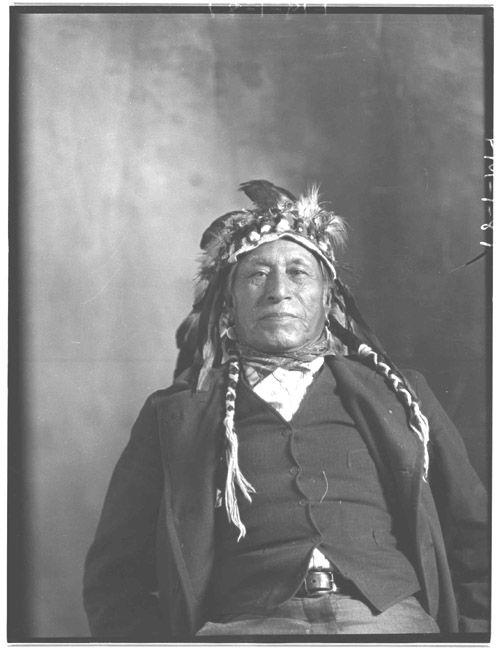 Cree indian casino decendant treasure island resort and casino las vegas