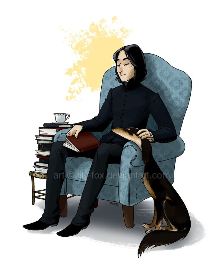 Saluki  by *lily-fox    ad Snape... I love Snape... and this Saluki is so cute