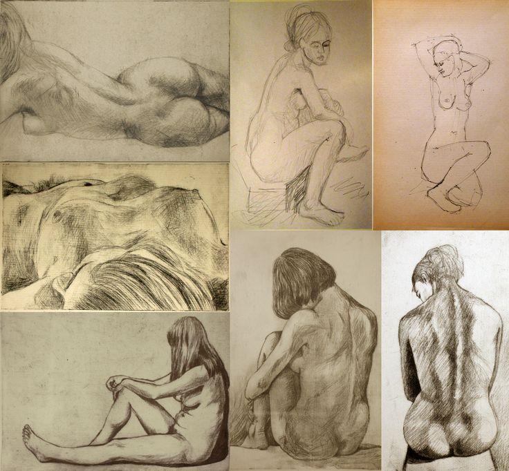 studii nud.anatomie
