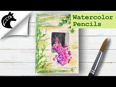 Paint With Watercolor Pencils Ideas For Beginners Youtube