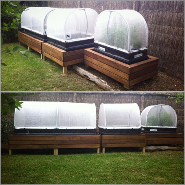 Instagram media vegepod - Ash from @yardimage is a gardening Goldilocks. He likes to try all three size beds ... raised garden beds. Small, medium and large pods, Safety Beach