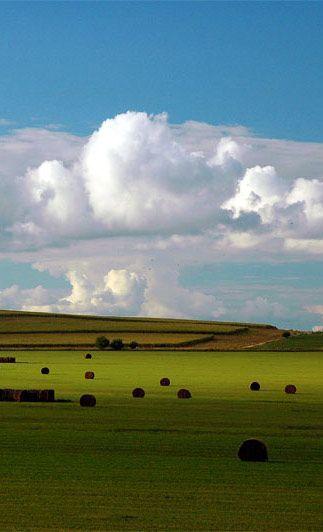 Nebraska, beautiful field of bales                                                                                                                                                     More
