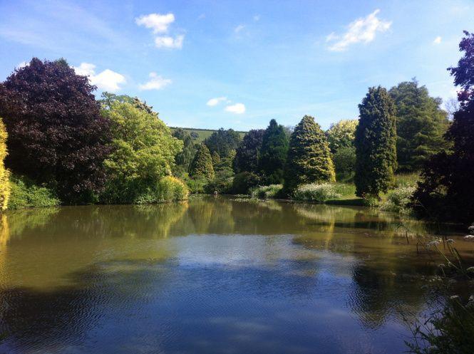 Batcombe Vale Fishing Lake