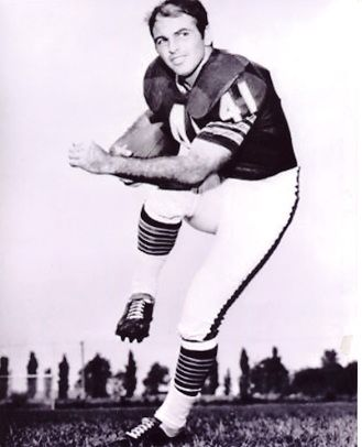 Brian Piccolo.....I Am Third (Book) - What an inspiration. Encourage your boys to read this book!