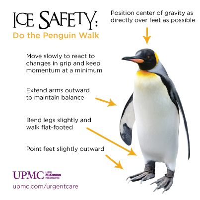 Walking in a winter wonderland? Take some tips from an expert -- walk like a ...
