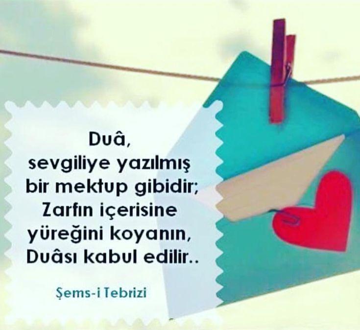DUA sevgiliye yazılmış bir mektup gibidir. Zarfın içerisine yüreğini koyanın, duası kabul edilir. #iyigeceler #goodnight #aşk #love #sevgi #mutluluk #happy #sokakmodasi #sokakyazıları #duvaryazıları #aşk #sevgi #mutluluk #özlemek #kavuşmak #şiir #türkiye #istanbul #derttaş #edebiyat #hasret #melek #izmir #yunusemre #mevlana #şemsitebrizi #cemalsüreya #namıkkemal #kitapkurdu #kitaptavsiyesi #şiir #şiirsokakta