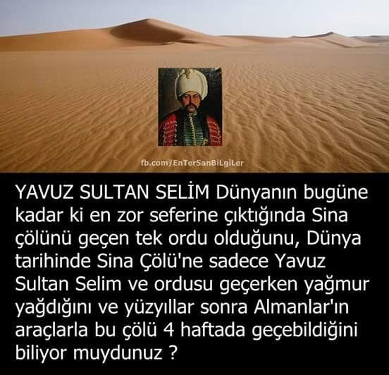 Yavuz Sultan Selim, Mısır Seferi
