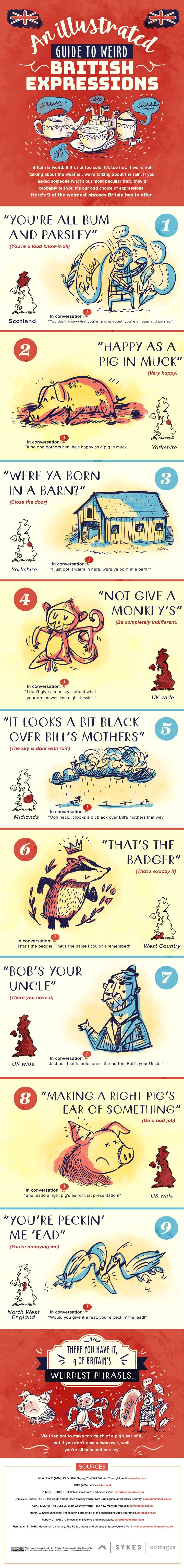Best British Phrases Ideas On Pinterest American English - The 12 strangest sayings in america