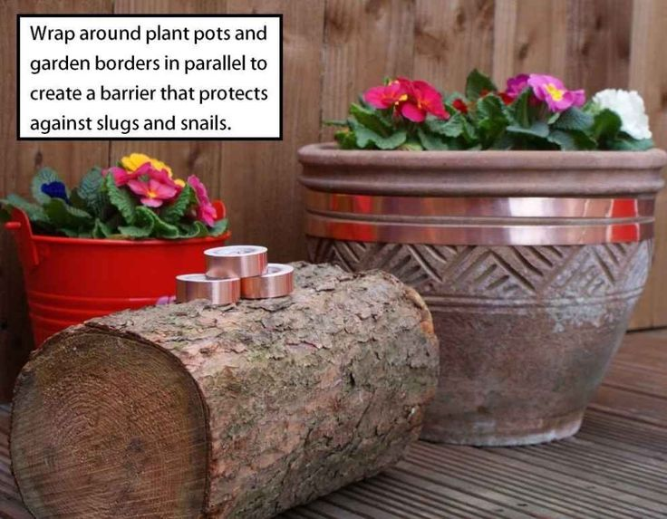 Copper tape to keep pesky slugs and snails from slithering their way onto your precious plants.