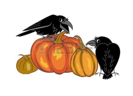crows: kraaien en pompoenen op een witte achtergrond. vector illustratie